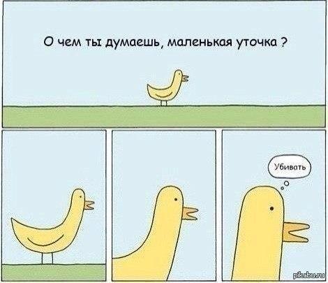 http://s6.pikabu.ru/images/big_size_comm/2014-08_7/14094866301697.jpg