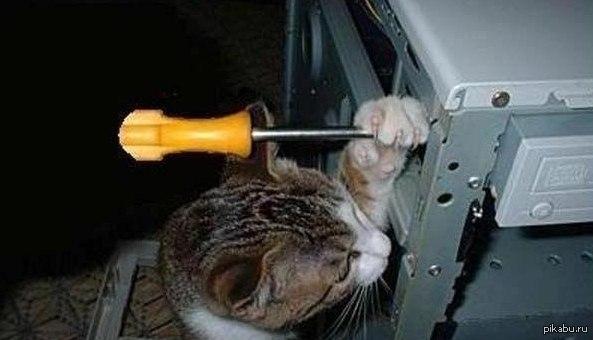 """На """"Байконуре"""" заявили, что причиной падения российского космического корабля """"Прогресс"""" стали украинские детали, - """"Интерфакс"""" - Цензор.НЕТ 5948"""