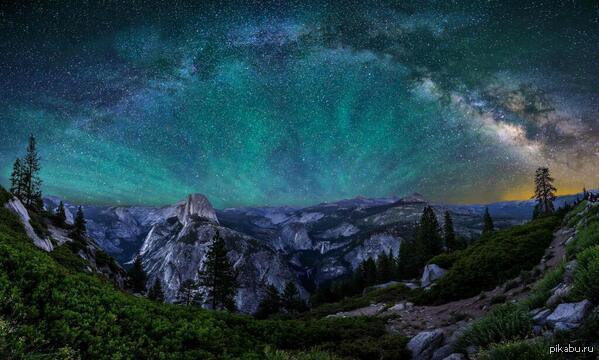 Природа дикая природа красота природы