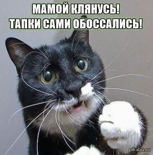 """Замгенпрокурора Теличенко о """"чистках"""" в ГПУ: """"Не все - подонки. Около трети таких, кому стыдно за нынешнюю прокуратуру"""" - Цензор.НЕТ 4267"""