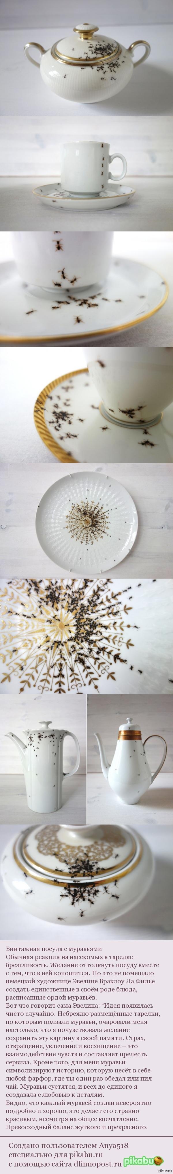 Винтажная посуда с муравьями. Сама бы я побоялась есть и пить из такого.  посуда, винтаж, Муравьи, Насекомые, длиннопост