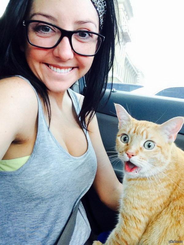 Немного удивлен   кот, девушки, очки