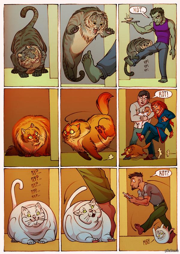 Котыыы)   кот, комиксы, живность