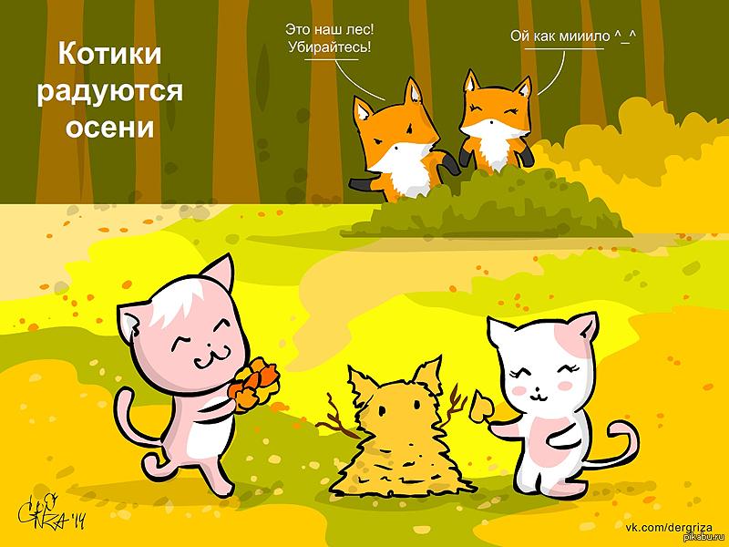 Картинки осень котики