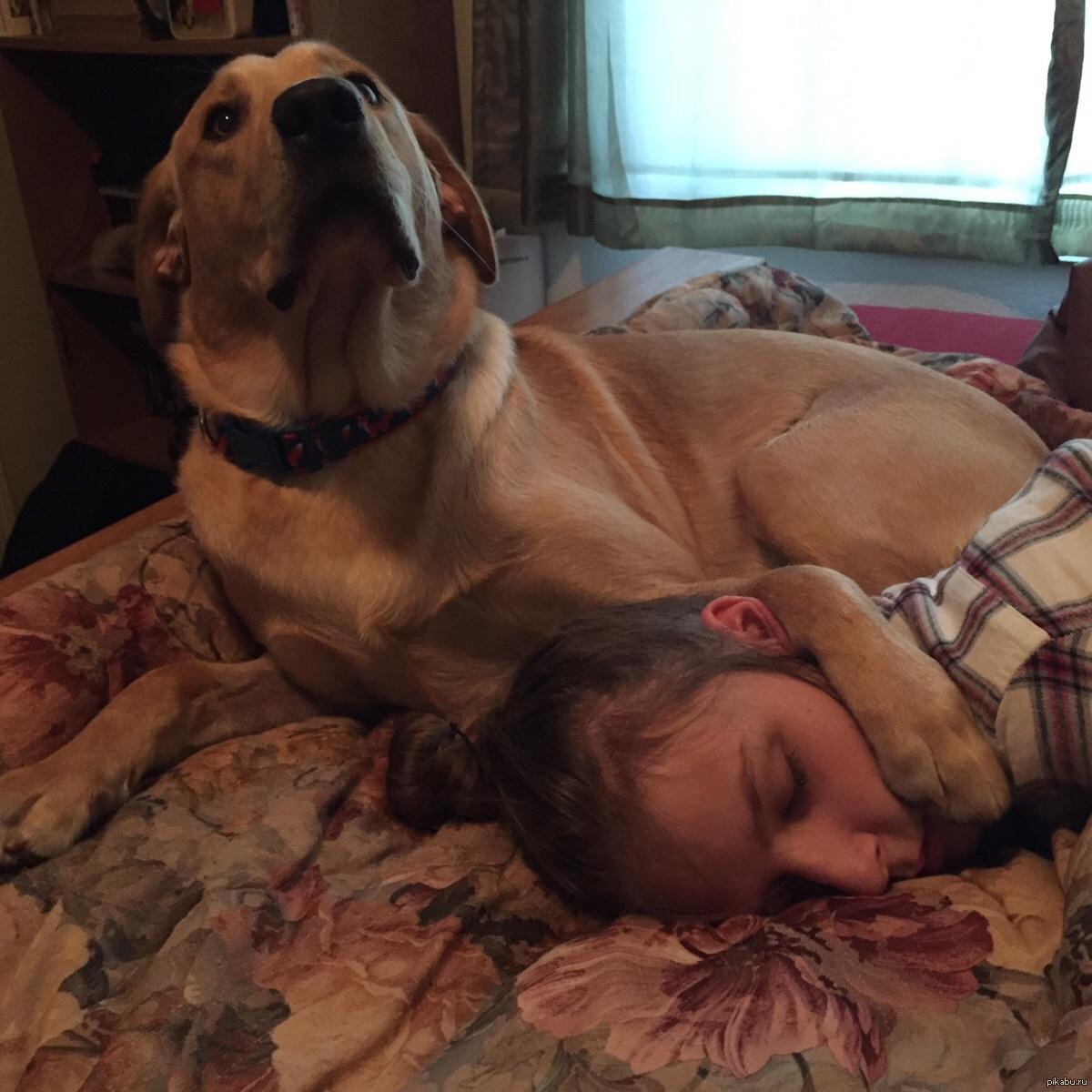 Как пес трахнул меня фото 194-763